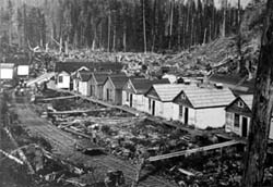 Logging camp, wide view